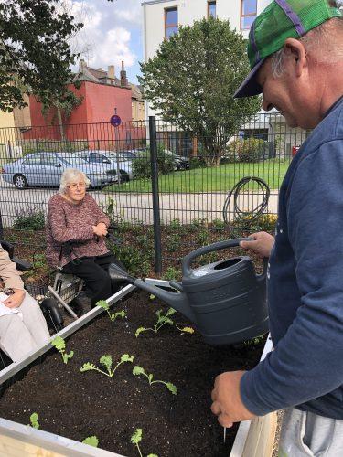 Bewohner bepflanzen ein Beet im Hochfelder Hofgarten.