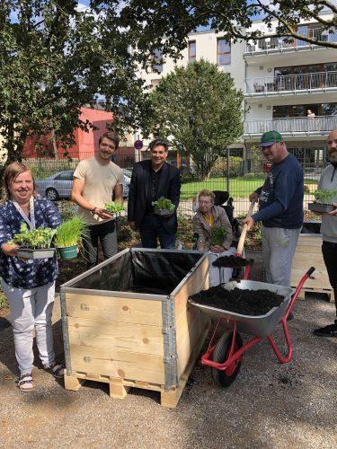 Menschen pflanzen gemeinsam Pflanzen im Hochfelder Hofgarten.