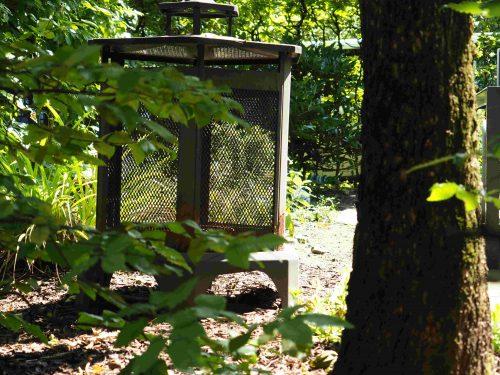 Aufnahme aus dem Garten. Zu sehen ist eine Laterne.