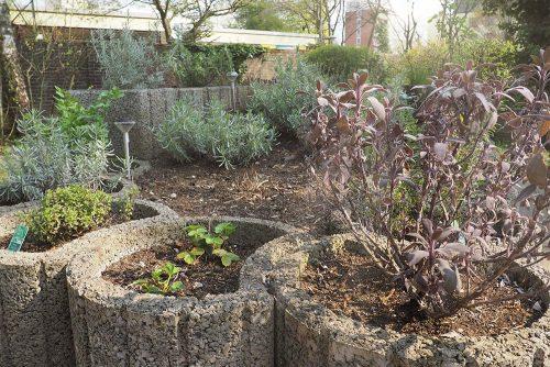 Blumenkübel mit Kräutern und Pflanzen im Garten in der Wanheimertsraße 355